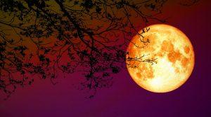 Lunar Eclipse – 5 June 2020