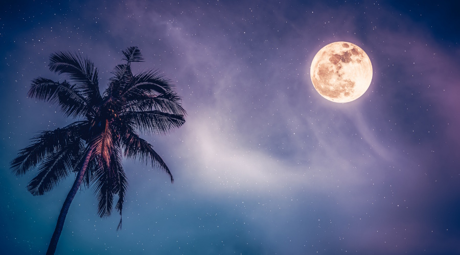 Full Moon in Libra – 28 March 2021
